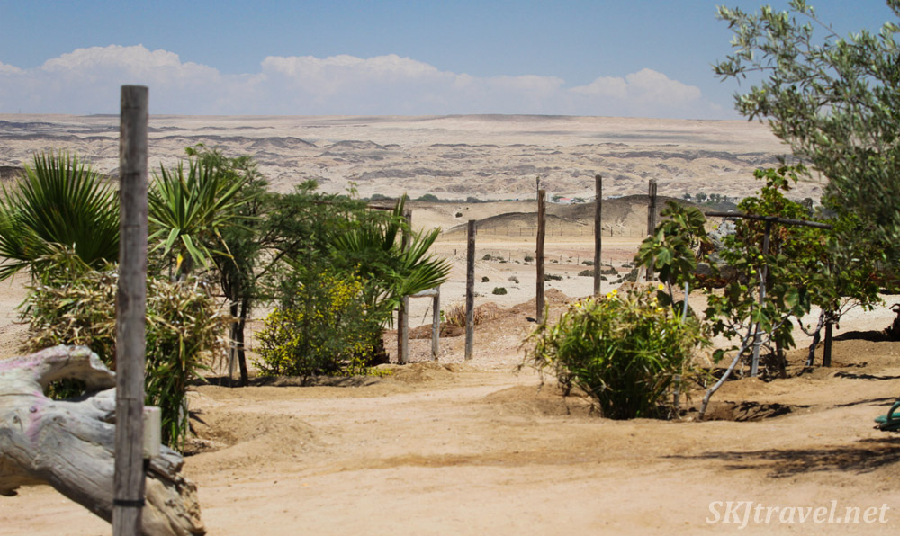 ADN care farm for Alzheimer's patients near Swapkopmund, Namibia. View from the patio.