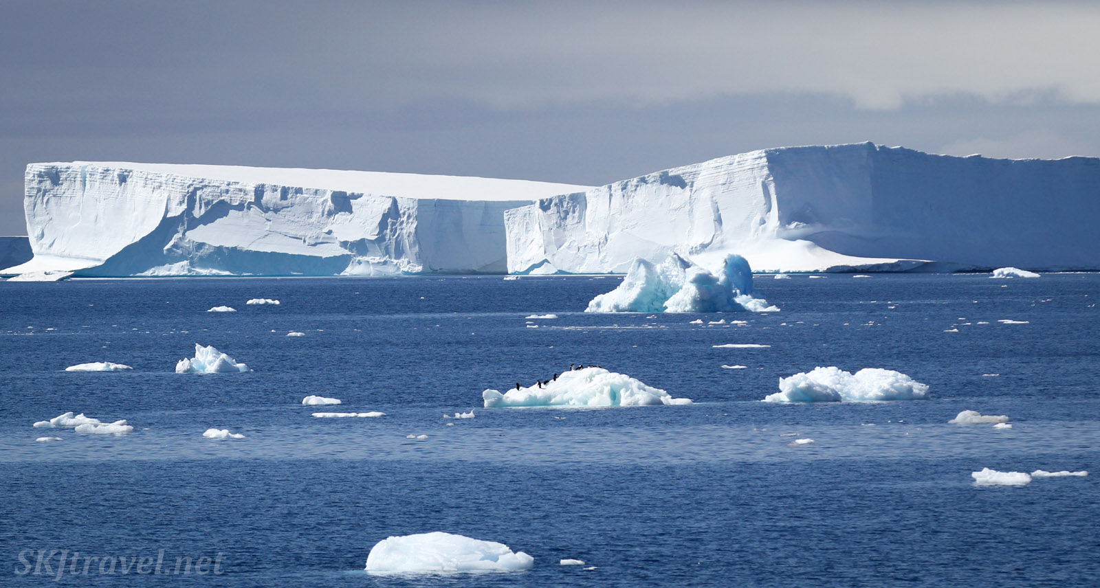 Tabular icebergs and penguins on a small iceberg, Southern Ocean, Antarctica.