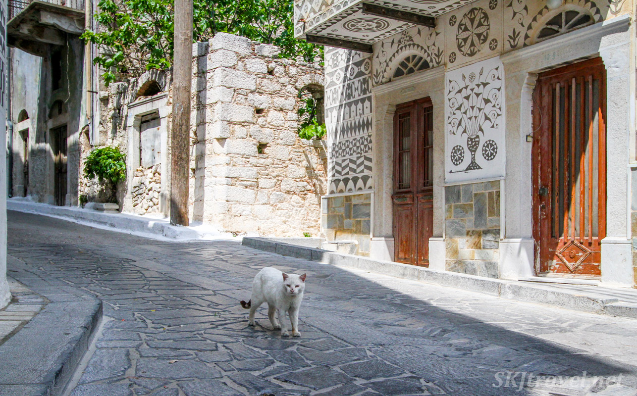Kitty cat walking down a cobblestone street in Pyrgi village, Chios Island, Greece.