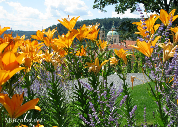 Daylilies were in profusion in the gardens. Prague castle.