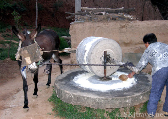 Little donkey pulls the millstone to grind soy beans, millet, flour and other items.