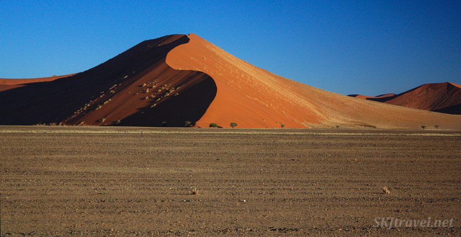 Sand dune the Sossusvlei region of Namibia.