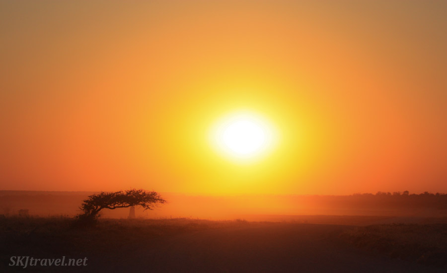 Sunset in Etosha National Park, Namibia.
