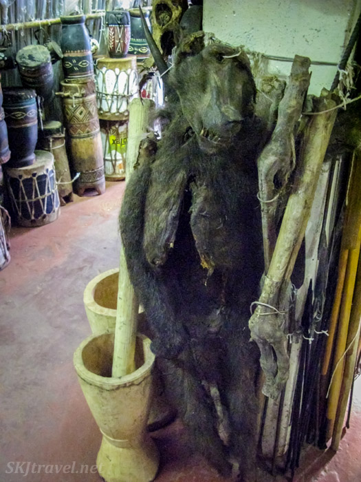 Taxidermy baboon, witch doctor supply store, Johannesburg, South Africa.