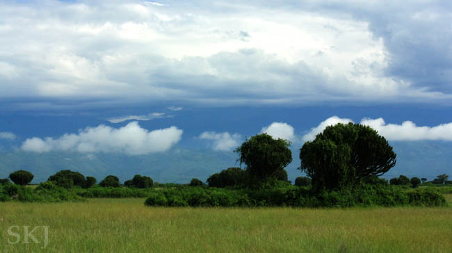 Brooding sky over the Rwenzori Mountain range, seen from Queen Elizabeth National Park. Uganda.