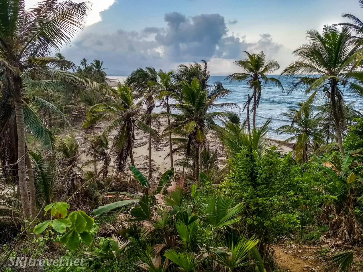 Looking down on the beach at Armila, Guna Yala, Panama.