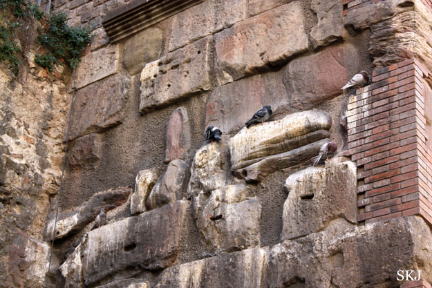 Two birds perched on part of a stone wall that merges with bricks. Photo by Shara Johnson