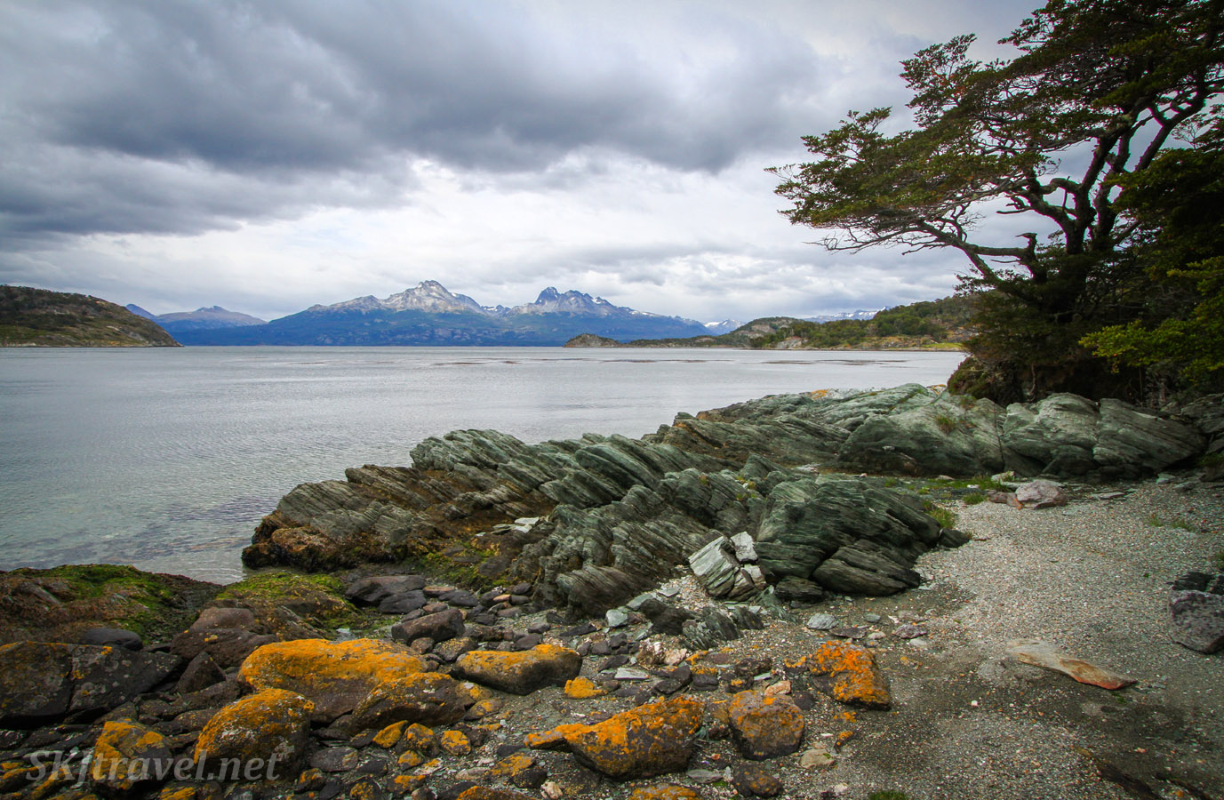 Shoreline in Tierra del Fuego National Park, Argentina.