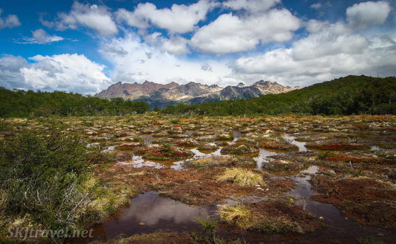 Peat bog on the way to Lake Esmeralda, Patagonia, Argentina.