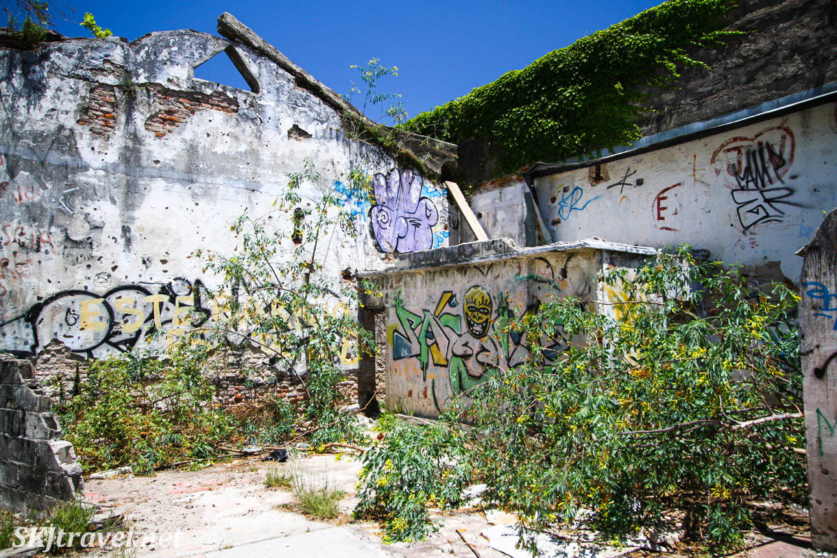 Graffiti on abandoned building, growing over with weeds, Colonia del Sacramento, Uruguay.