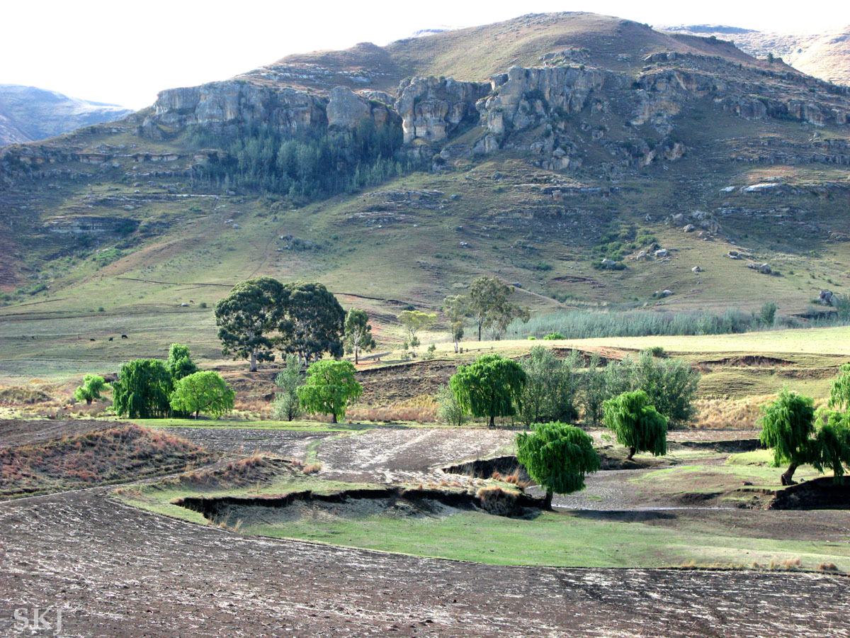 Entering into Lesotho, the Mountain Kingdom, via the Monontsha border. Green trees in a valley.