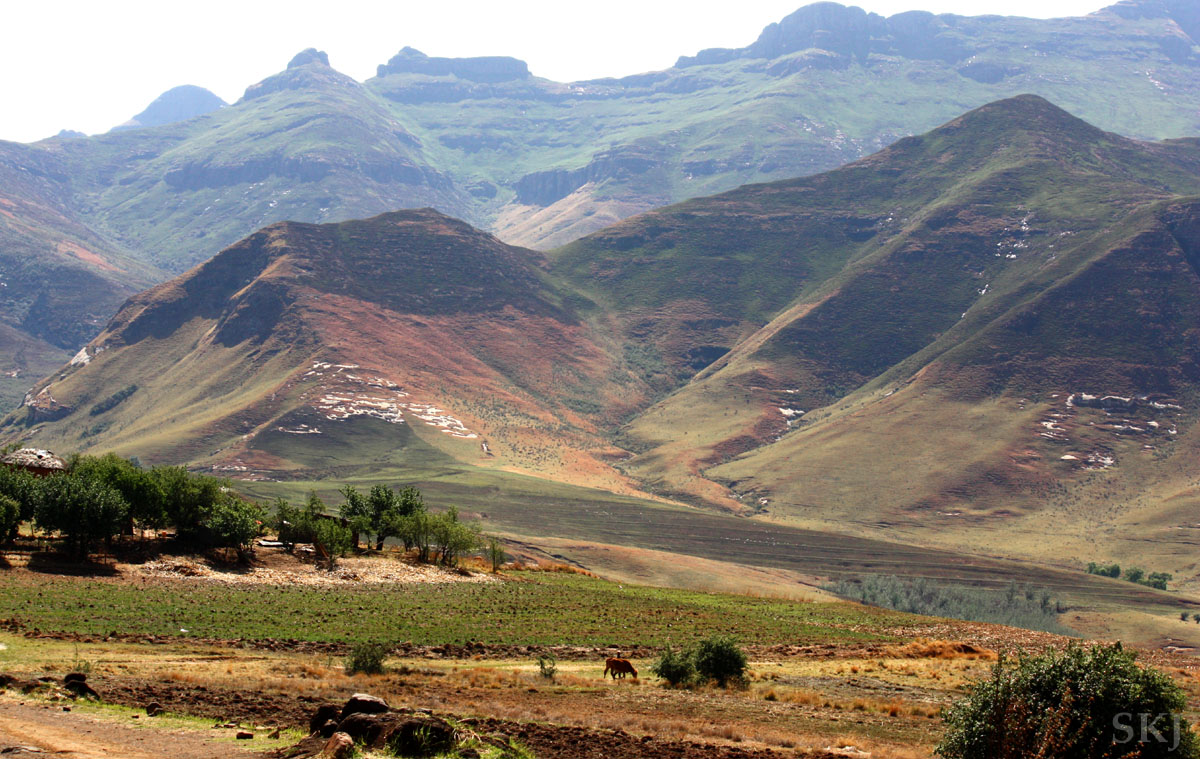 Typical landscape of a valley in the mountains of Lesotho (the Mountain Kingdom), with horses grazing in the valley.