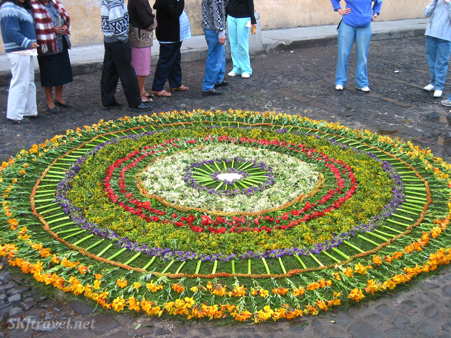 Making carpets with flowers on the cobblestone streets of Antigua, Guatemala, Thursday night before Good Friday. Semana Santa celebration.