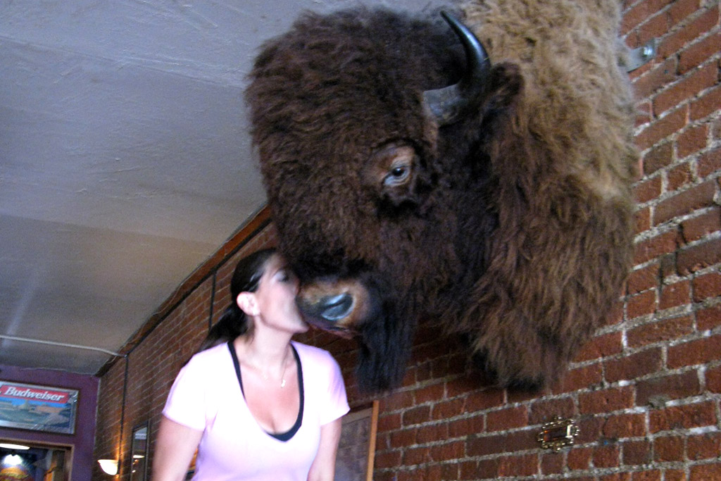 Pearl Street Pub, Boulder, Colorado. Kissing the buffalo.