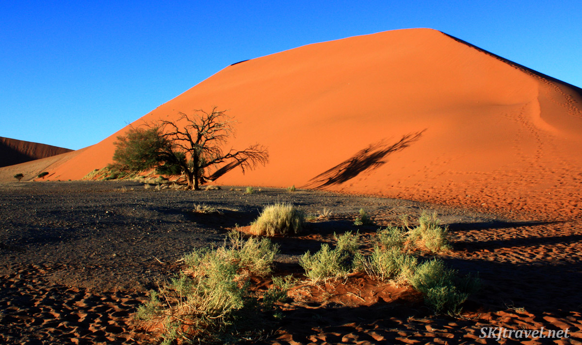 Large red sand dune in Sossusvlei NP, Namibia.