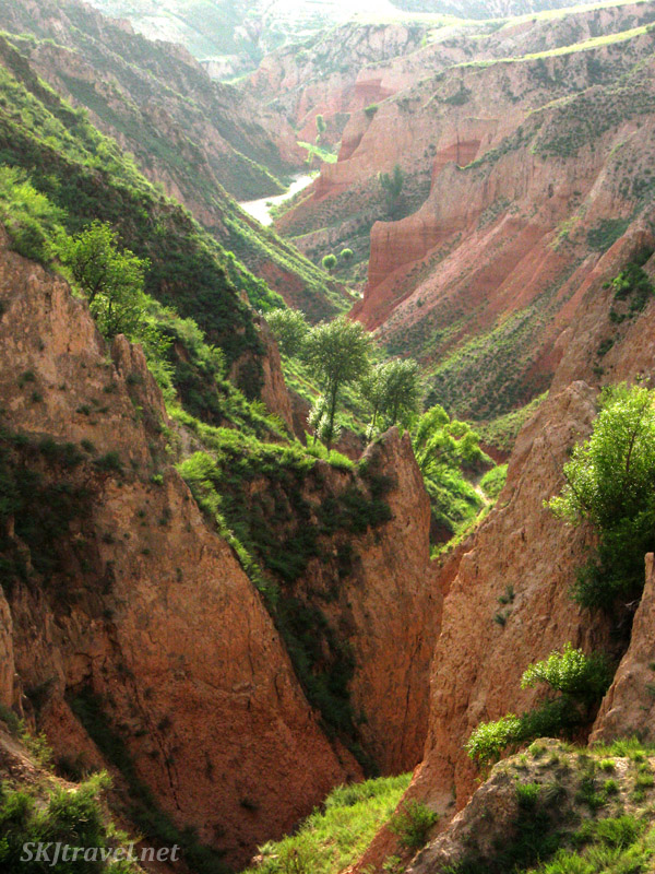 Water cutting deep valleys into the soft soil of the Loess Plateau. Dang Jiashan village, Shaanxi Province, China.