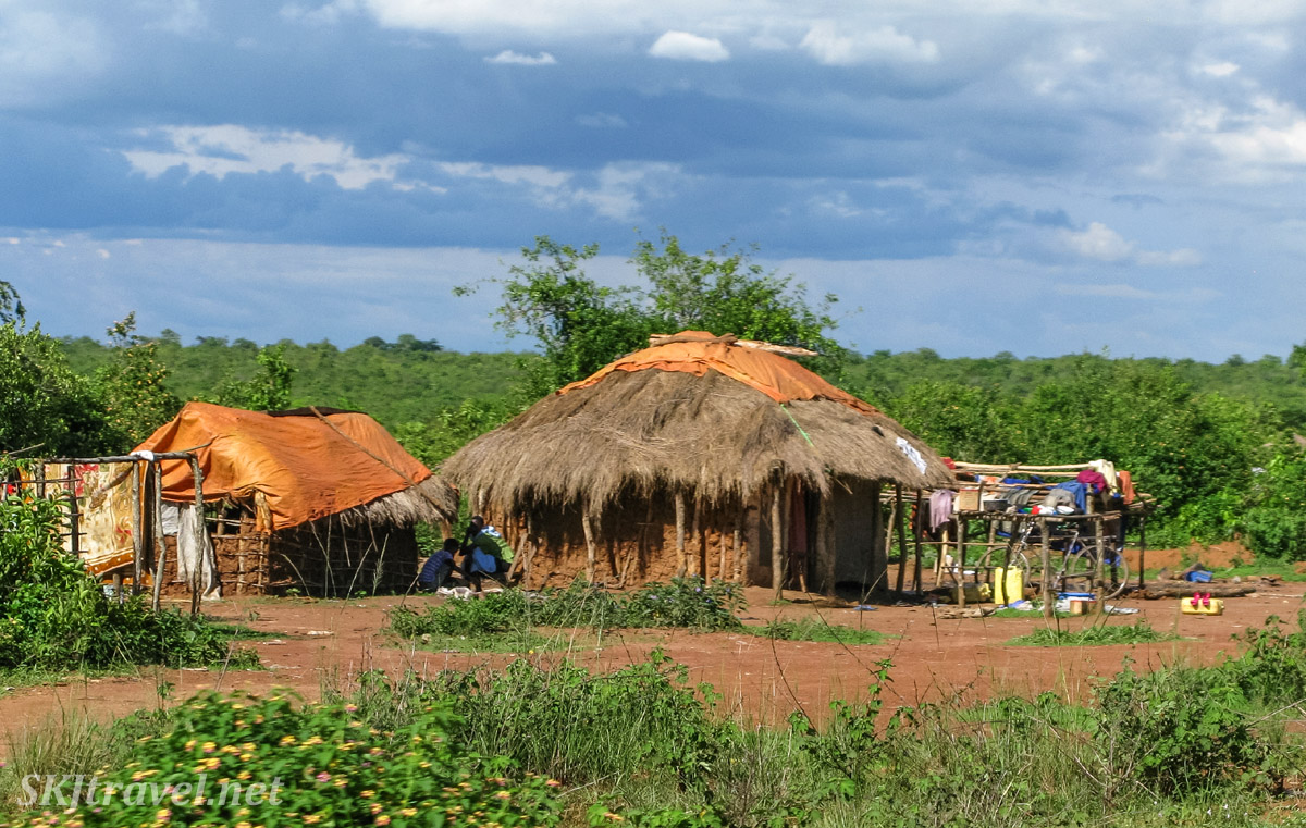 Traditional Ugandan houses, thatched-roof mud huts supported with wooden poles, along the roadside, rural Uganda.