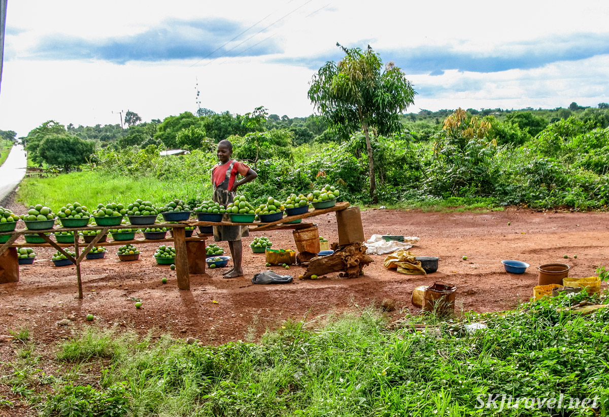 Roadside produce stand, manned by a young girl. Rural Uganda.
