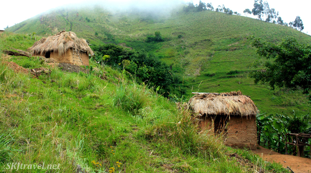 Mud huts with thatched roofs on a misty mountain side in the lower Rwenzoris, Uganda.