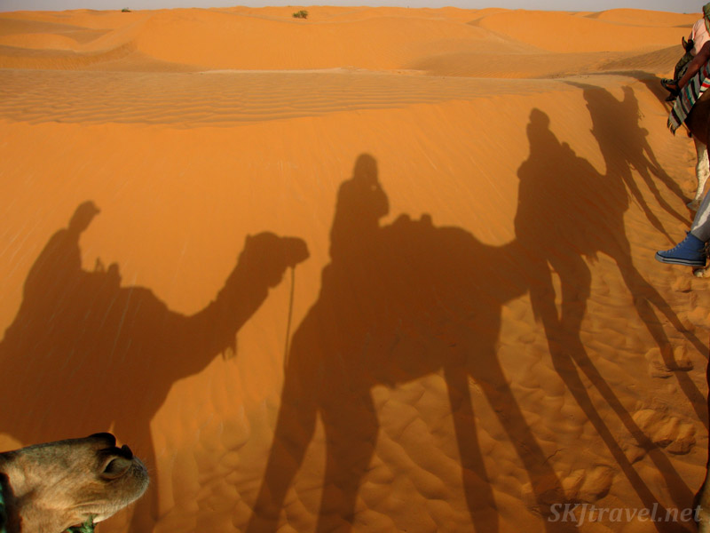 Silhouettes on the sand dunes of us riding our camels in the Sahara Desert, Tunisia.