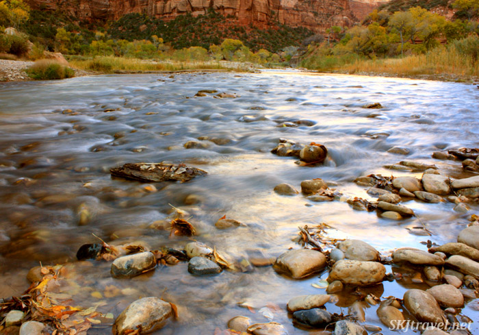 Virgin River Zion. Wide shallow rocky river with turning autumn trees.