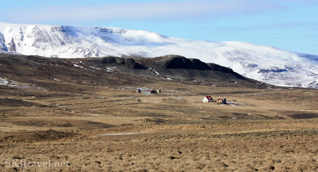 Farmhouses in brown field in the interior of Iceland. Photo by Shara Johnson